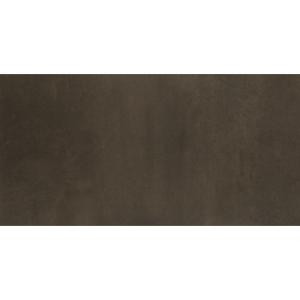 Emser Cosmopolitan Earth 12 in. x 24 in. Porcelain Floor and Wall Tile (11.64 sq. ft. / case)-1092955 205749237