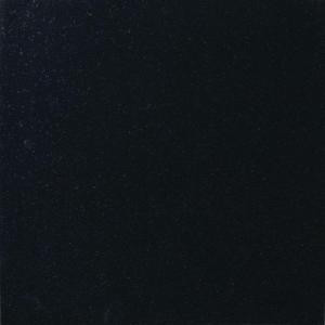 MS International Absolute Black 18 in. x 18 in. Polished Granite Floor and Wall Tile (9 sq. ft. / case)-TABSBLK1818 202508271