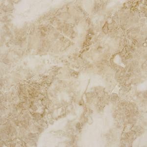 MS International Cappuccino 12 in. x 12 in. Polished Marble Floor and Wall Tile (10 sq. ft. / case)-TTCAPU1212P 202508303