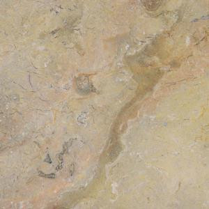 MS International Sahara Gold 12 in. x 12 in. Polished Marble Floor and Wall Tile (10 sq. ft. / case)-TSAHGLD1212 202508296