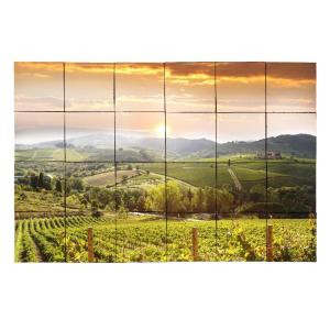 Tile My Style Vineyard5 36 in. x 24 in. Tumbled Marble Tiles (6 sq. ft. /case)-TMS0005M3 203457818