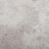 Emser Silver 18 in. x 18 in. Marble Floor and Wall Tile-1165886 204765760