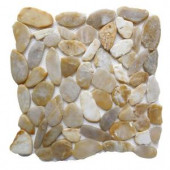 Islander Golden Sapphire 12 in. x 12 in. Sliced Natural Pebble Stone Floor and Wall Tile-20-1-008 205916327