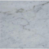 MS International Carrara White 18 in. x 18 in. Polished Marble Floor and Wall Tile (13.5 sq. ft. / case)-TCARRWHT181838 205762404