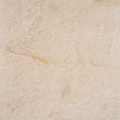 MS International Coastal Sand 18 in. x 18 in. Honed Limestone Floor and Wall Tile (9 sq. ft. / case)-CCOASAN1818H 206088879
