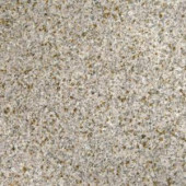 MS International Gold Rush 12 in. x 12 in. Polished Granite Floor and Wall Tile (5 sq. ft. / case)-TGLDRUS1212 202508275