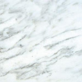 MS International Greecian White 12 in. x 12 in. Honed Marble Floor and Wall Tile (5 sq. ft. / case)-TARACAR1212H 202508328
