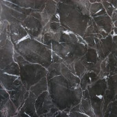 MS International Laurent Brown 18 in. x 18 in. Polished Marble Floor and Wall Tile (11.25 sq. ft. / case)-TCLAUBRN1818 204701838