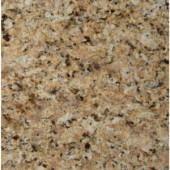 MS International St. Helena Gold 12 in. x 12 in. Polished Granite Floor and Wall Tile (10 sq. ft. / case)-THELGLD1212 202508264