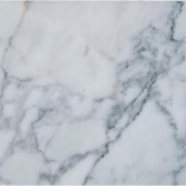 MS International Statuary Venato 12 in. x 12 in. Polished Marble Floor and Wall Tile (10 sq. ft. / case)-TSTATU1212 205762433