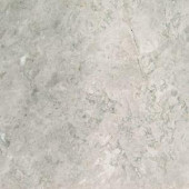 MS International Tundra Gray 18 in. x 18 in. Polished Marble Floor and Wall Tile (9 sq. ft. / case)-TTUNGRY1818P 205762444