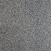 MS International White Sparkle 12 in. x 12 in. Polished Granite Floor and Wall Tile (5 sq. ft. / case)-TBIACTLN1212 202508260