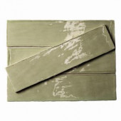 Splashback Tile Catalina Green Lake 3 in. x 12 in. x 8 mm Ceramic and Wall Subway Tile-CATALINA3X12KALE 206496913